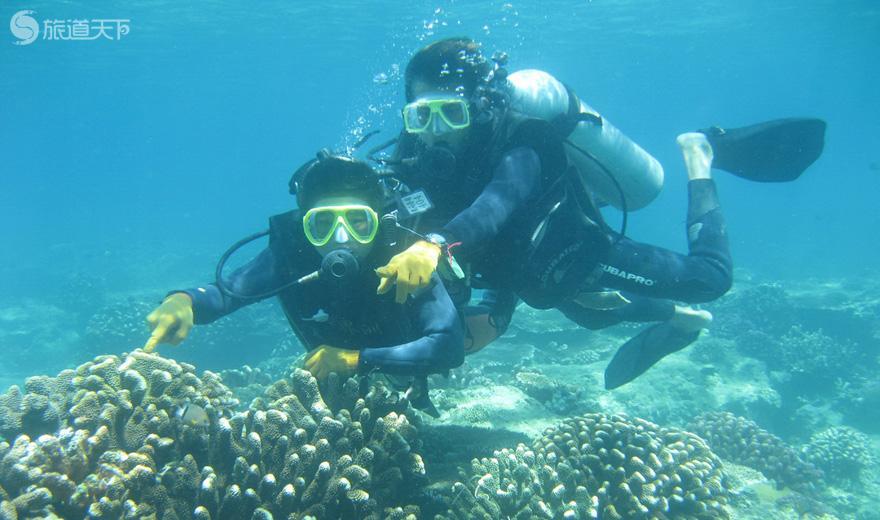 分界洲岛潜水